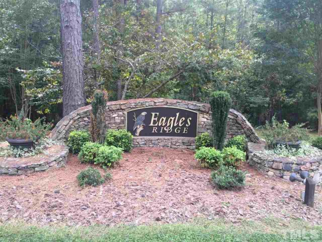 250 Bald Eagle Drive, Pittsboro, NC 27312 (#2153115) :: M&J Realty Group