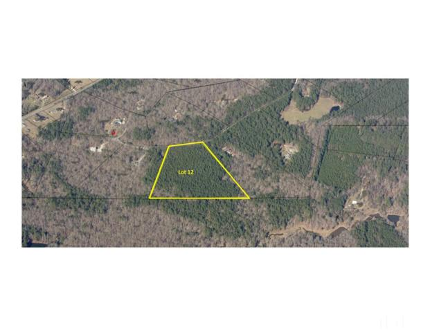 Lot 12 Woodland Park Drive, Hillsborough, NC 27278 (#2156882) :: The Abshure Realty Group