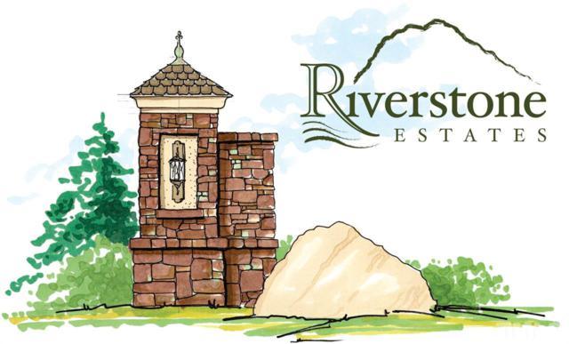 155 Riverstone Drive, Pittsboro, NC  (#2157734) :: The Jim Allen Group