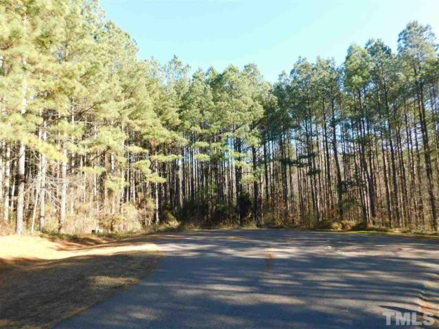 Lot 17 Courtney Drive, Louisburg, NC 27549 (#2167208) :: The Jim Allen Group