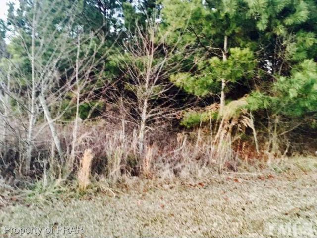 0 Bearskin Road, Salemburg, NC 28385 (#2169203) :: Marti Hampton Team - Re/Max One Realty