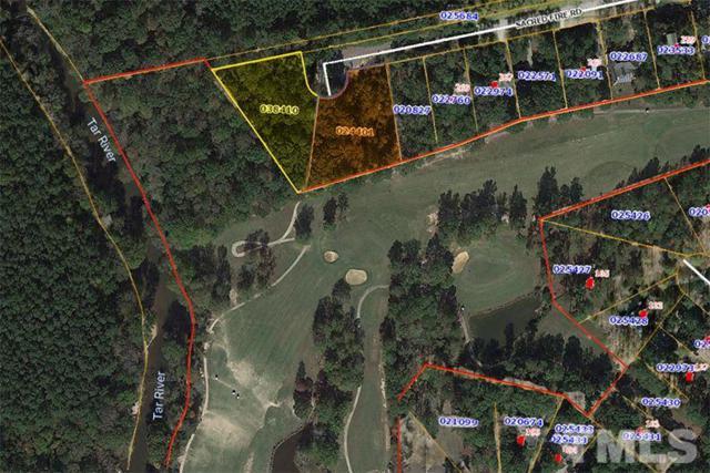 273 Sacred Fire Drive, Louisburg, NC 27549 (#2176651) :: Marti Hampton Team - Re/Max One Realty