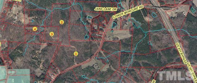 0 Lower Moncure Road, Sanford, NC 27330 (#2178414) :: RE/MAX Real Estate Service