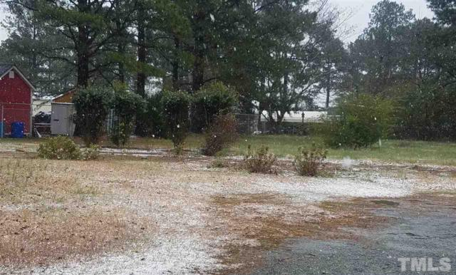 59 To Be Added Lane, Lillington, NC 27546 (#2178467) :: Marti Hampton Team - Re/Max One Realty