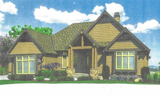 132 Windfall Creek Drive, Chapel Hill, NC 27517 (#2182270) :: The Jim Allen Group