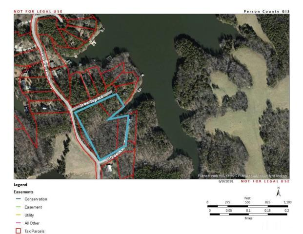 3 Shore Acres Drive, Semora, NC 27343 (#2197681) :: M&J Realty Group