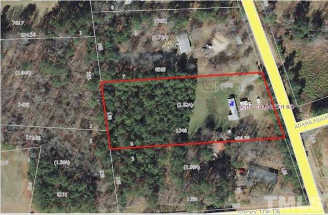 4089 Culbreth Road, Stem, NC 27581 (#2203814) :: The Perry Group
