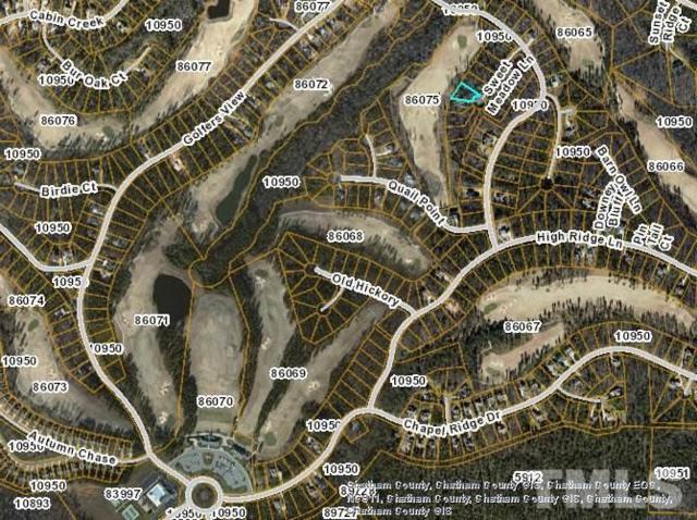 48 Sweet Meadows Lane, Pittsboro, NC 27312 (#2207495) :: The Jim Allen Group