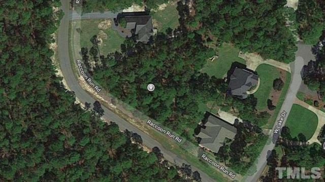 Raccoon Run, Wagram, NC 28396 (#2212533) :: Sara Kate Homes