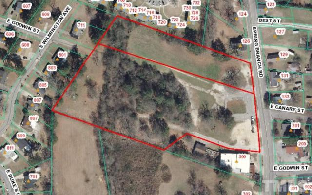 Spring Branch Road, Dunn, NC 28334 (#2213259) :: RE/MAX Real Estate Service