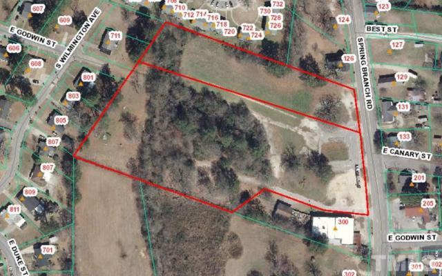 Spring Branch Road, Dunn, NC 28334 (#2213259) :: Marti Hampton Team - Re/Max One Realty