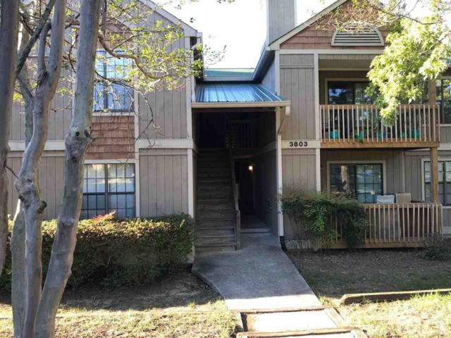 3803 Chimney Ridge Place #108, Durham, NC 27713 (#2221649) :: The Perry Group