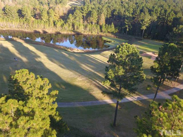 933 Golfers View, Pittsboro, NC 27312 (#2221698) :: M&J Realty Group
