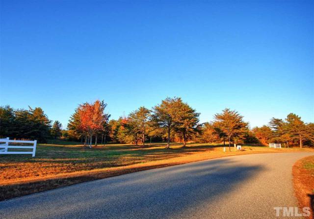 Lot 16 Triple Creek Drive, Efland, NC 27243 (#2223961) :: Marti Hampton Team - Re/Max One Realty