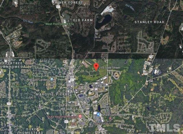 215 Todd Street, Durham, NC 27705 (#2224047) :: Marti Hampton Team - Re/Max One Realty
