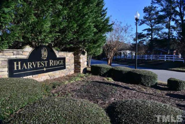 184 Abundant Avenue, Angier, NC 27501 (#2233346) :: The Perry Group