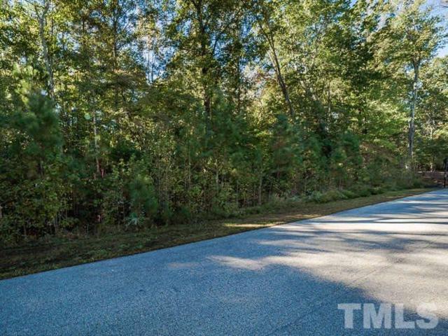 7400 Trail Blazer Trail, Wake Forest, NC 27587 (#2233448) :: The Jim Allen Group