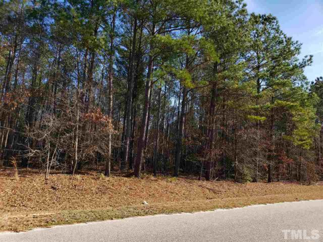 196 Raynor Sands Drive, Dunn, NC 28334 (#2240374) :: Marti Hampton Team - Re/Max One Realty