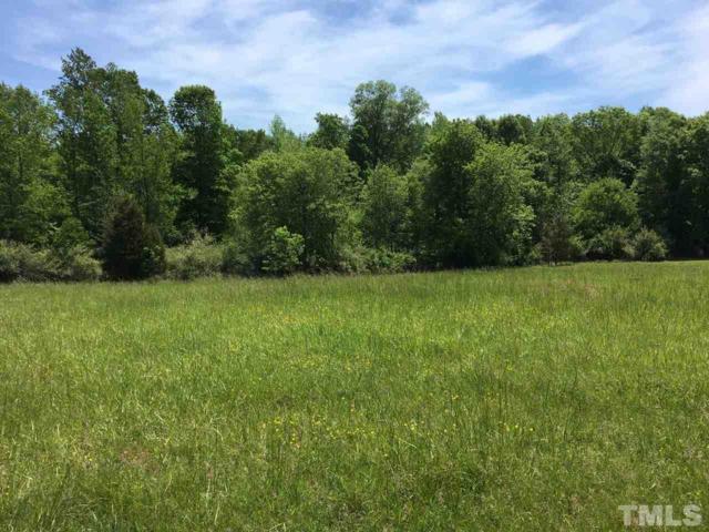 230 Spring View Lane, Pittsboro, NC 27312 (#2246852) :: Rachel Kendall Team