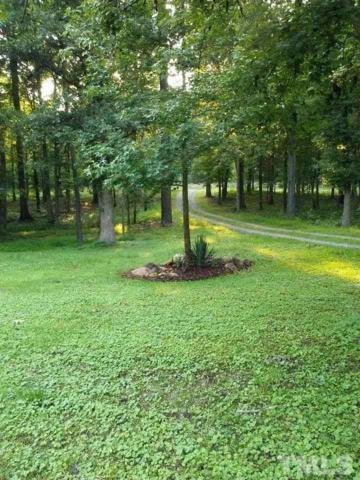 3555 Alston Chapel Road, Pittsboro, NC 27312 (#2252553) :: Marti Hampton Team - Re/Max One Realty