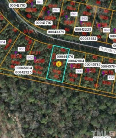864 Thrush Drive, Vass, NC 28394 (#2255026) :: Dogwood Properties