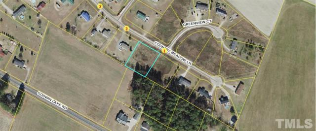 Lot 23 Country Meadow Lane, Dunn, NC 28334 (#2261022) :: Dogwood Properties