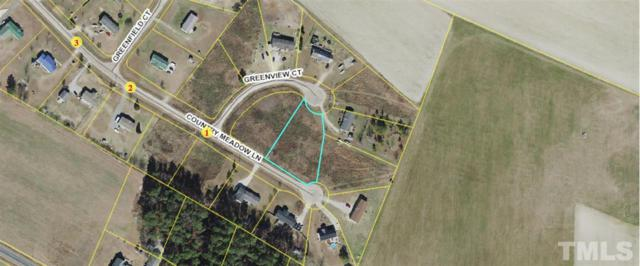 Lot 31 Greenview Drive, Dunn, NC 28334 (#2261250) :: Dogwood Properties