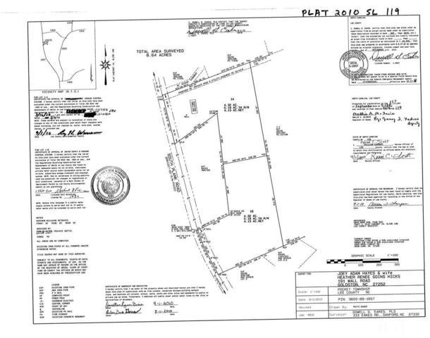 3215 S Plank Road, Sanford, NC 27330 (#2262372) :: The Jim Allen Group