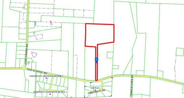 2794 Old School Road, Four Oaks, NC 27524 (#2263384) :: The Jim Allen Group