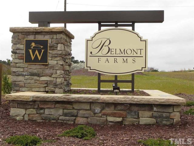 17 Belmont Farms Drive, Benson, NC 27504 (#2264161) :: The Perry Group