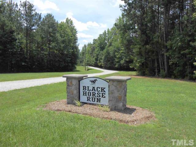 61 Black Horse Lane, Kittrell, NC 27544 (#2264533) :: The Jim Allen Group