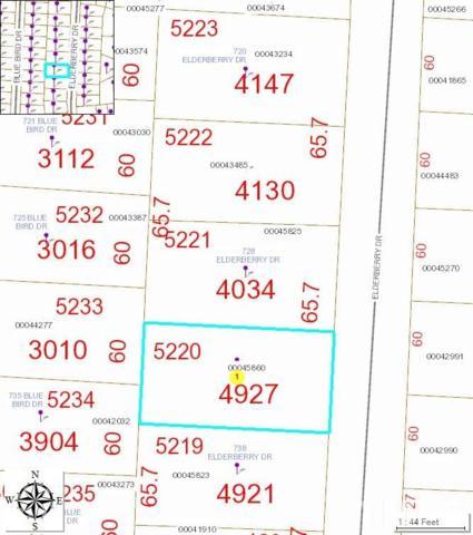732 Elderberry Drive, Vass, NC 28394 (#2271090) :: Dogwood Properties