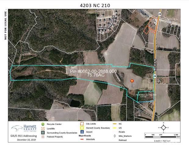 4203 Nc 210 Highway N, Lillington, NC 27546 (#2292930) :: The Jim Allen Group
