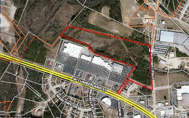 N Powell Avenue, Dunn, NC 28334 (#2296250) :: Dogwood Properties