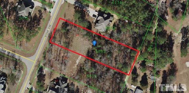 199 Josie Drive, Benson, NC 27504 (MLS #2297262) :: On Point Realty