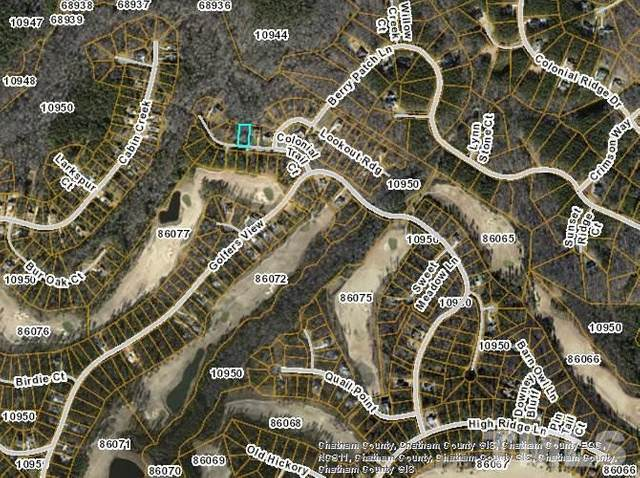 138 Colonial Trail, Pittsboro, NC 27312 (#2299998) :: Real Estate By Design