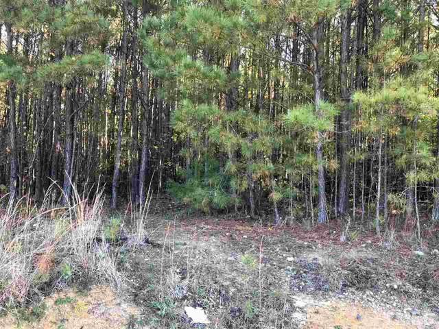 Lot 1 White Cross Road, Chapel Hill, NC 27516 (#2309814) :: Dogwood Properties