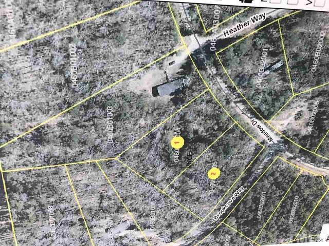 Lot 1&2 Meadow Drive, Kittrell, NC 27544 (#2316169) :: Real Estate By Design