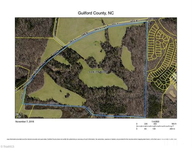 5200 Mcconnell Road, Whitsett, NC 27377 (#2316331) :: Raleigh Cary Realty