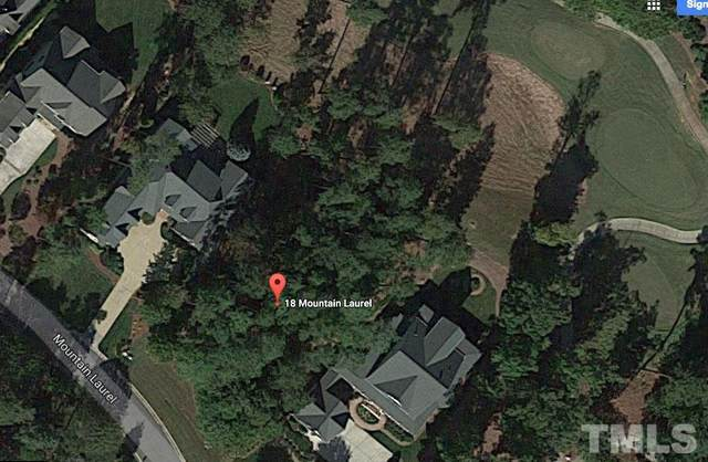 18 Mountain Laurel, Chapel Hill, NC 27517 (#2326448) :: Marti Hampton Team brokered by eXp Realty
