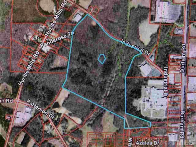 TBD Industrial Drive, Roxboro, NC 27574 (#2333181) :: Marti Hampton Team brokered by eXp Realty