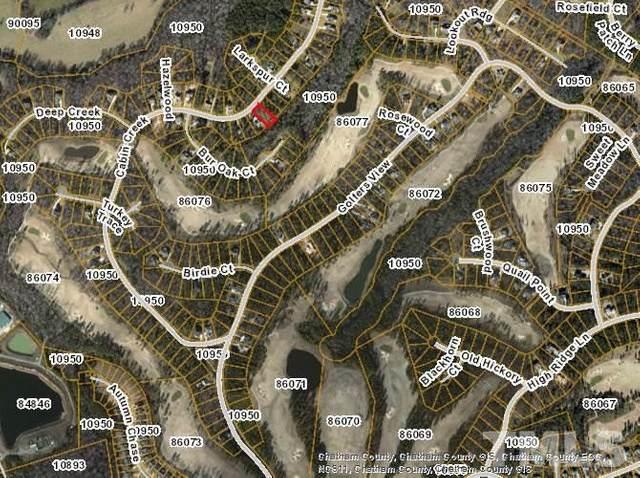 692 Cabin Creek, Pittsboro, NC 27312 (#2334369) :: Classic Carolina Realty