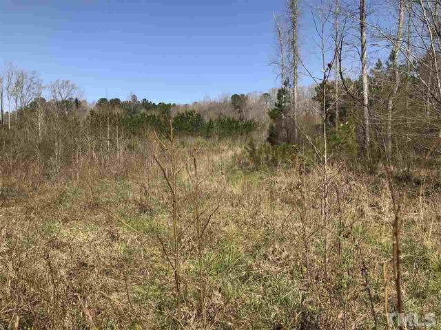 Lot 21 Round Fish Drive, Sanford, NC 27330 (#2335362) :: Raleigh Cary Realty
