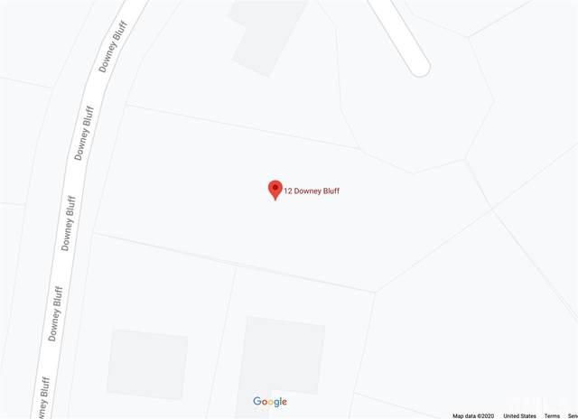 12 Downey Bluff, Pittsboro, NC 27312 (#2341081) :: Saye Triangle Realty