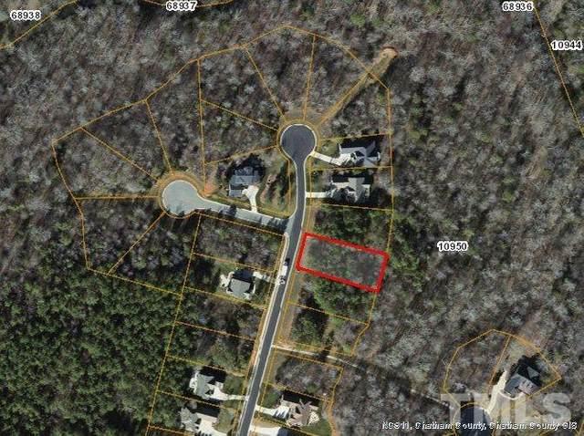992 Cabin Creek, Pittsboro, NC 27312 (#2343999) :: Saye Triangle Realty