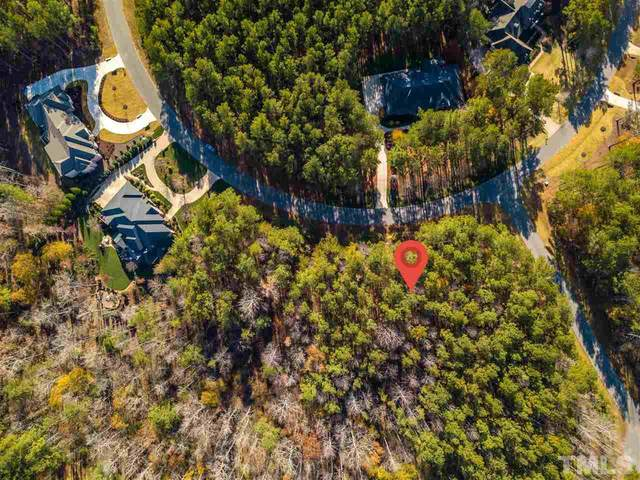 221 Berry Patch Lane, Pittsboro, NC 27312 (#2346405) :: Bright Ideas Realty