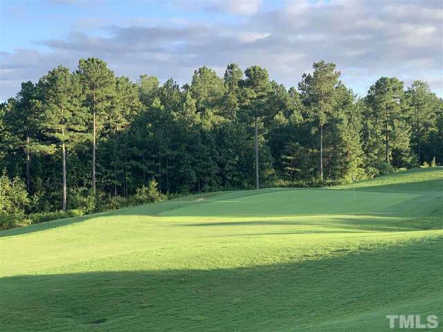699 Golfers View, Pittsboro, NC 27312 (#2350866) :: The Beth Hines Team