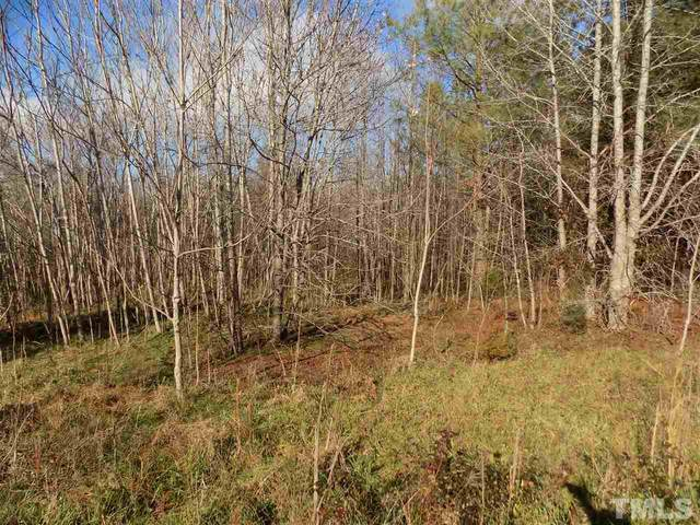 Lot 20 Sandy Plains Lane, Henderson, NC 27537 (#2358439) :: Triangle Top Choice Realty, LLC