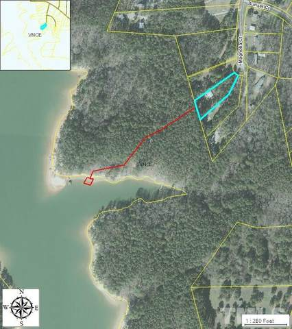 Lot 9 Magnolia Court, Manson, NC 27553 (#2362607) :: Saye Triangle Realty