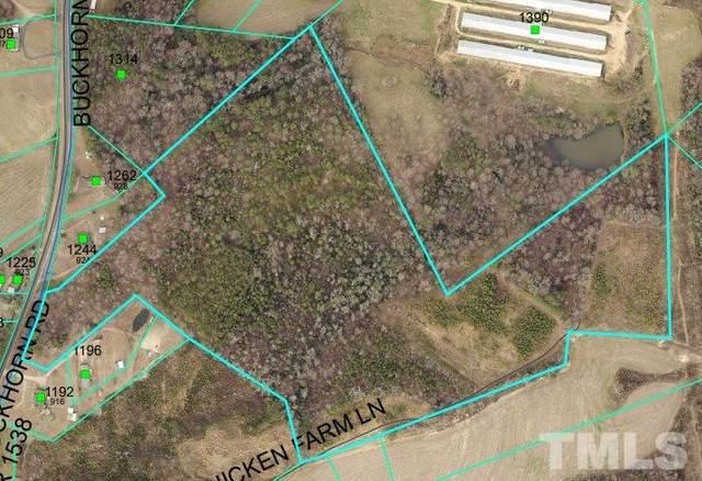1 Buckhorn Road, Sanford, NC 27330 (#2363929) :: RE/MAX Real Estate Service